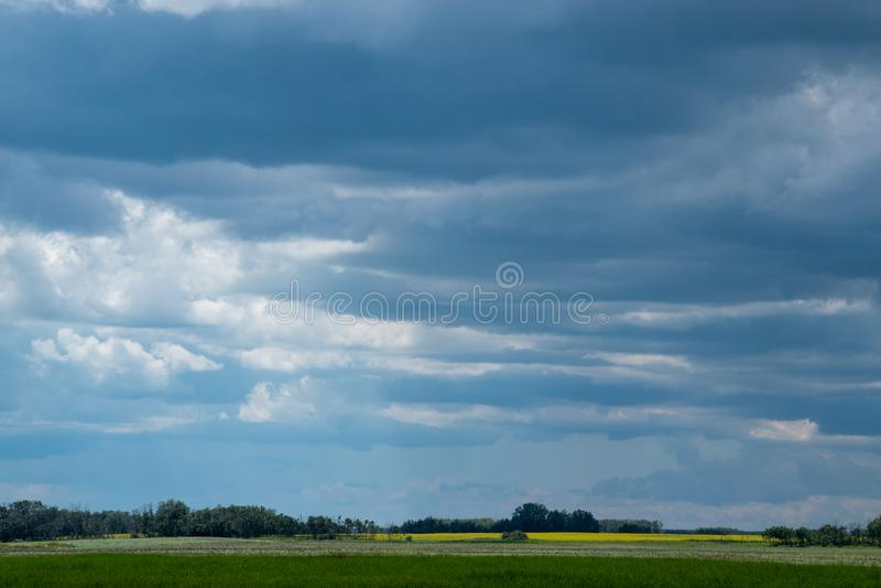 Bewolkte hemel boven canolagebieden, Saskatchewan, Canada stock afbeeldingen