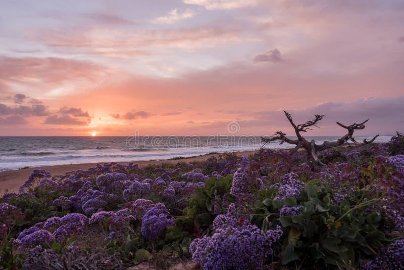 Bewolkte Strandzonsondergang stock fotografie