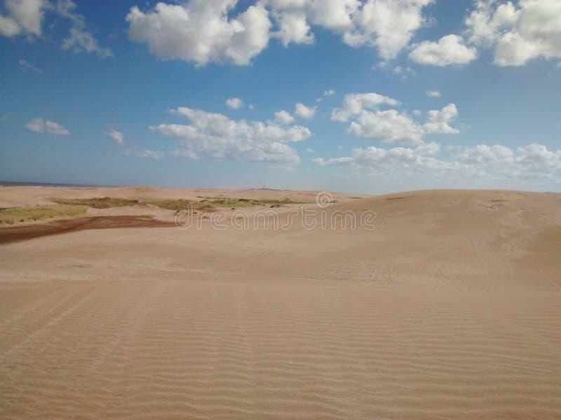 Bewolkte Woestijn royalty-vrije stock afbeelding