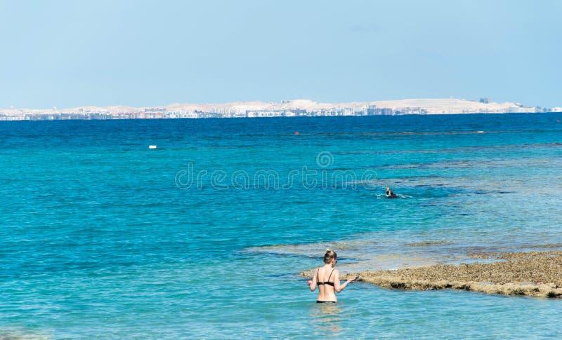 Bewundern Sie die wunderschönen Korallenriffe direkt am Ufer, schnorcheln im Roten Meer stockbild