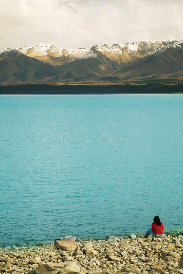 Bewundern von Neuseeland lizenzfreie stockbilder