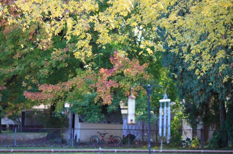 Download Beyond the Fence stock image. Image of backyard, november - 93255161