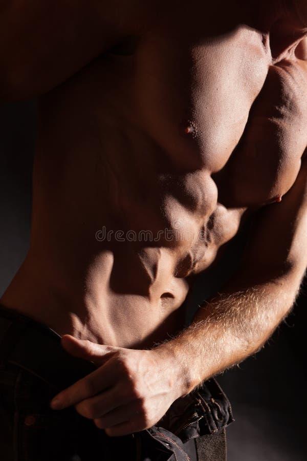 Mięśniowa męska półpostać zdjęcie royalty free