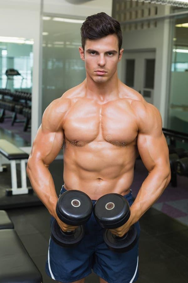 Bez koszuli mięśniowy mężczyzna napina mięśnie z dumbbells w gym zdjęcie royalty free