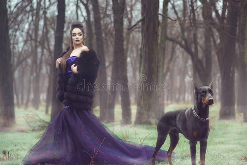 Bezaubernde Dame im violetten Abendkleid der luxuriösen Paillette und im Pelzmantel, die im Wald mit ihrem Dobermann Pinscherhund stockfotografie