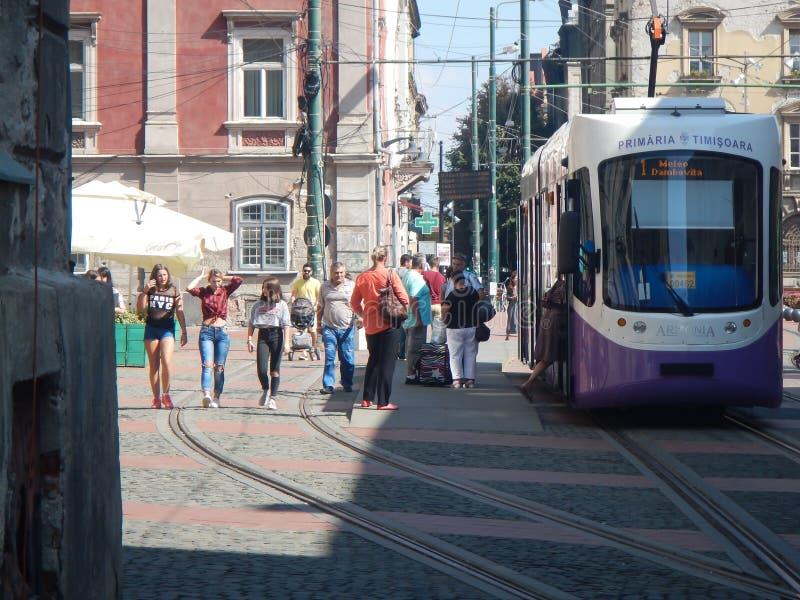 Bezienswaardigheden bezoekend in Timisoara, Roemenië stock foto