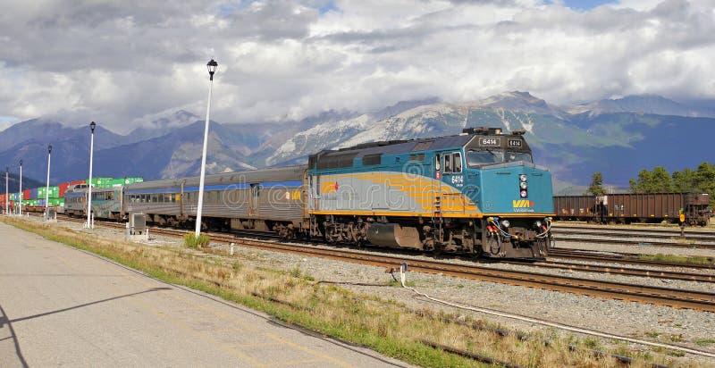 Bezienswaardigheden bezoekende trein Canadese rotsachtige bergen stock foto's