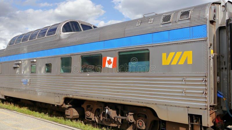 Bezienswaardigheden bezoekende trein Canadese rotsachtige bergen royalty-vrije stock fotografie