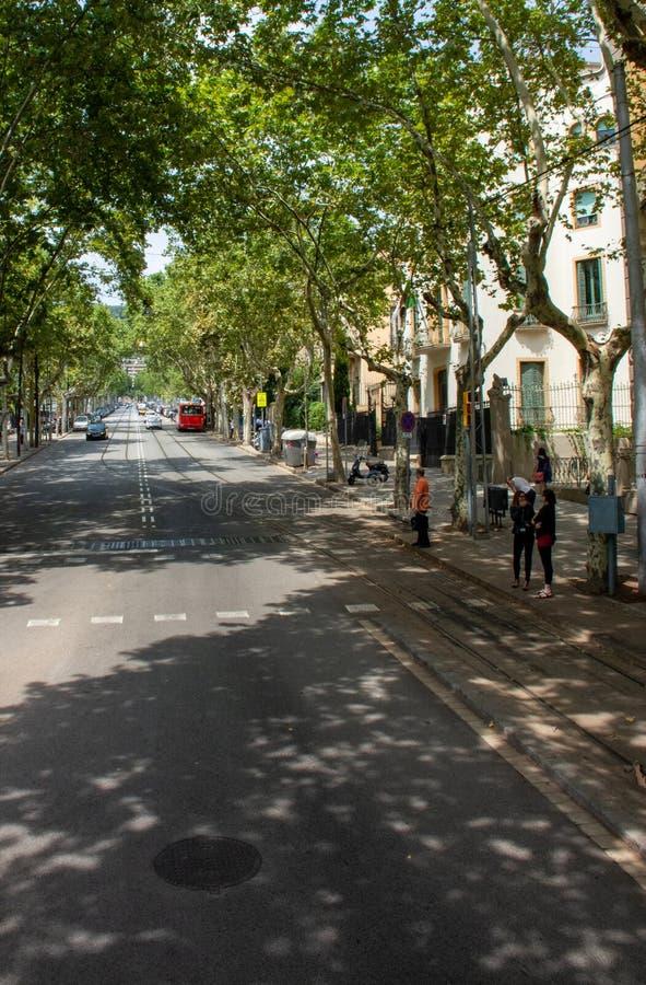 Bezige straat met voetgangers die weg van Barcelona wachten te kruisen stock afbeeldingen