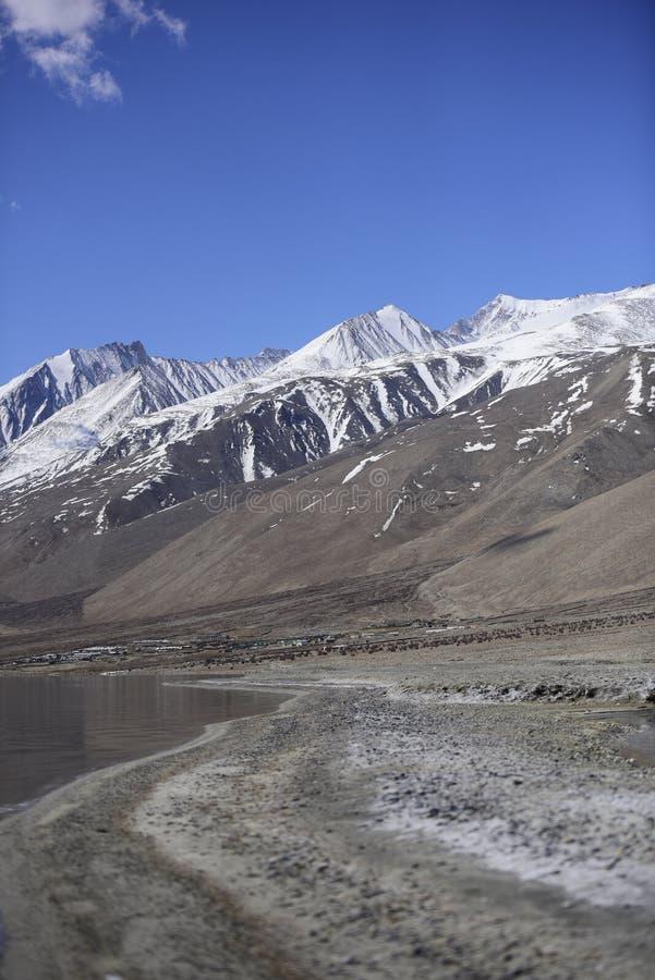 Bezinning van Bergen op Pangong-Meer met blauwe hemelachtergrond Leh, Ladakh, India royalty-vrije stock foto