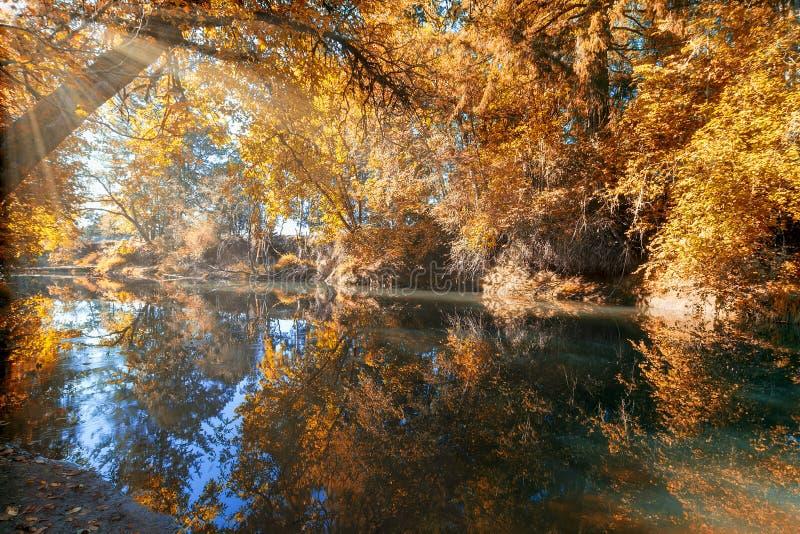 Bezinning van Crabtree-Kreek in Dalingsseizoen Oregon stock foto's