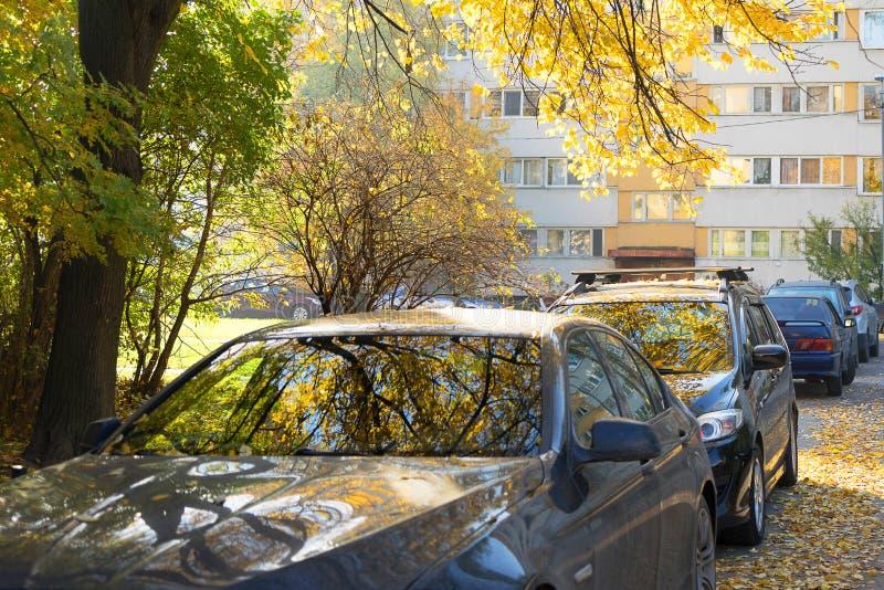 Bezinning van gele de herfstbomen in de windschermen van de auto's royalty-vrije stock foto's