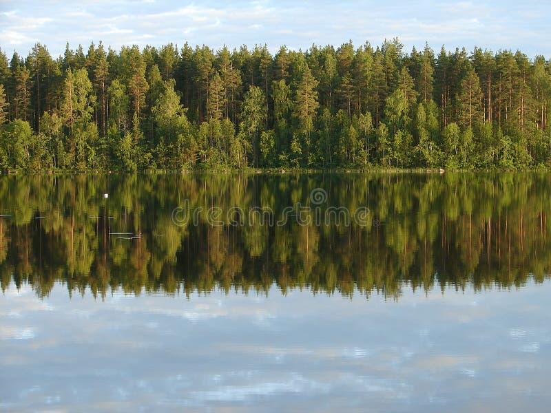 Bezinning van het Bos in het Meer stock afbeeldingen