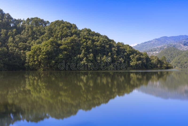 Bezinning van het bos in meer royalty-vrije stock afbeelding