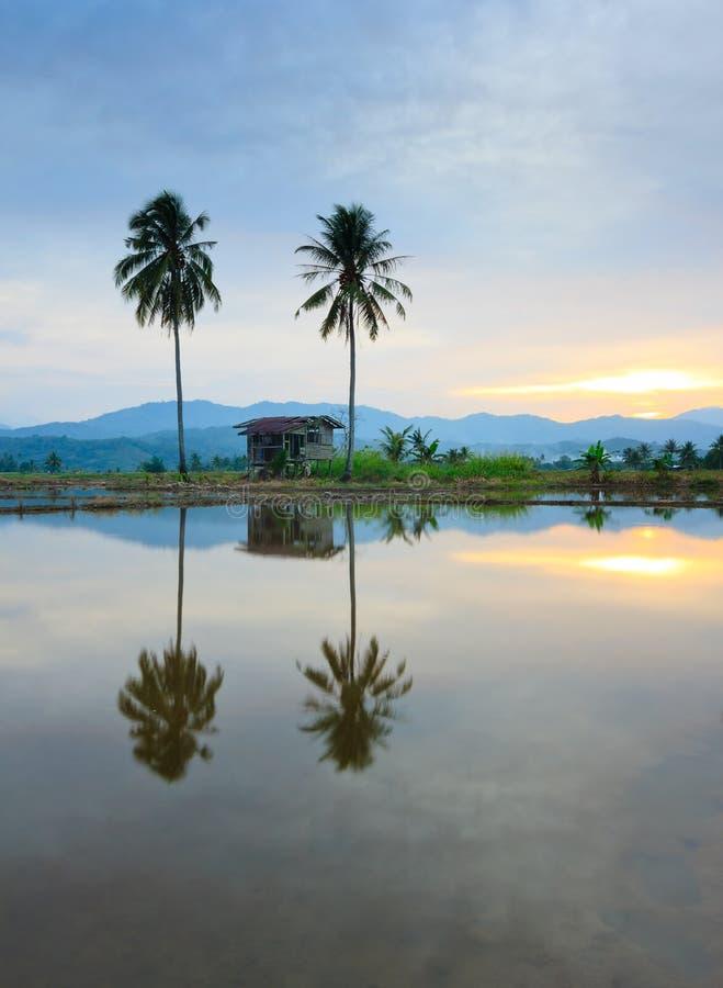Bezinning van heuvels, een hut en kokospalmen stock afbeelding
