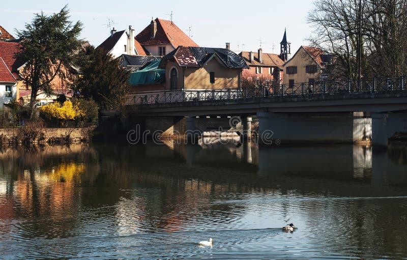 Bezinningen in de rivier stock afbeelding
