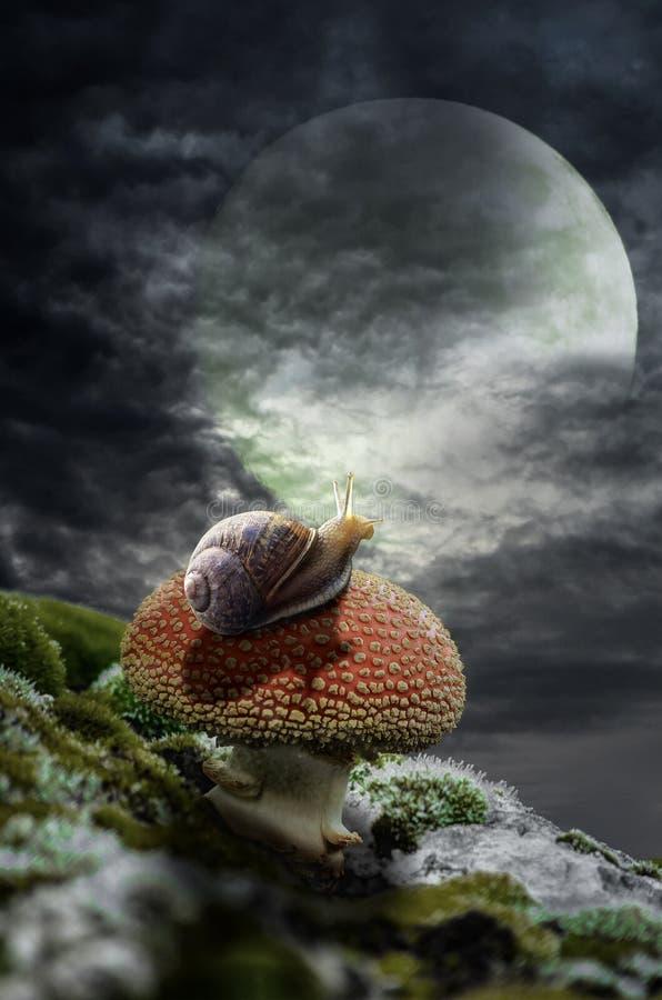 Bezinningen in het maanlicht vector illustratie