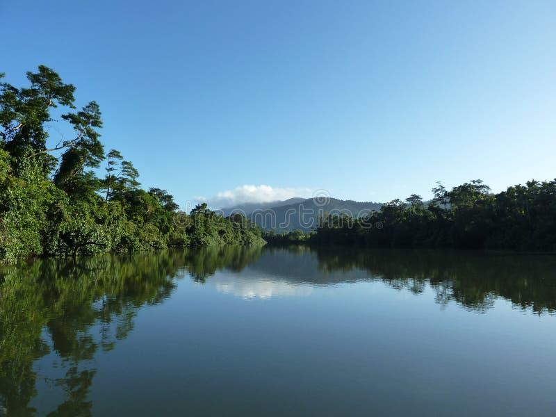 Bezinningen - Tropische Rivier stock afbeelding