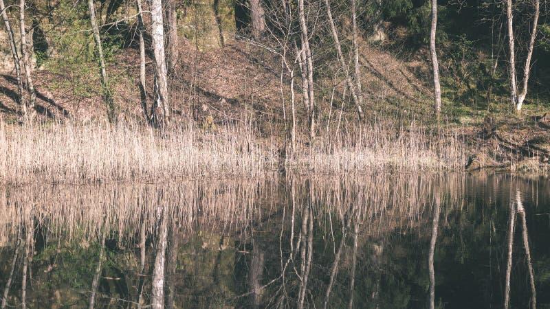 bezinningen van bomen in bergrivier in de zomer - retro wijnoogst stock afbeeldingen