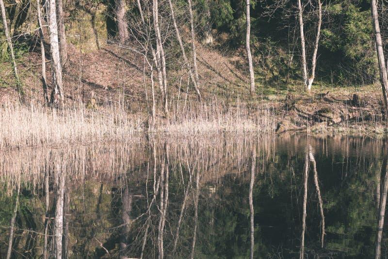 bezinningen van bomen in bergrivier in de zomer - retro wijnoogst royalty-vrije stock afbeelding
