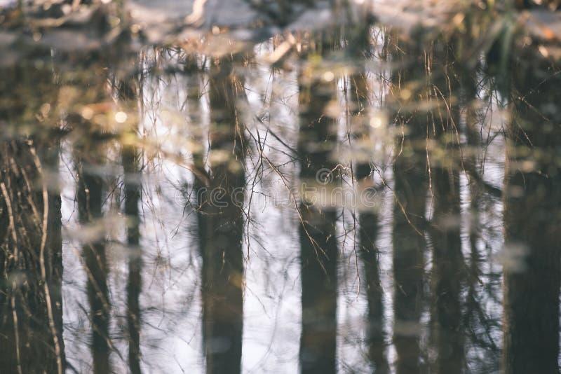 bezinningen van bomen in bergrivier in retro de zomerwijnoogst stock afbeeldingen
