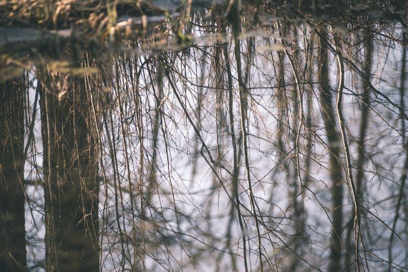 bezinningen van bomen in bergrivier in retro de zomerwijnoogst stock foto's