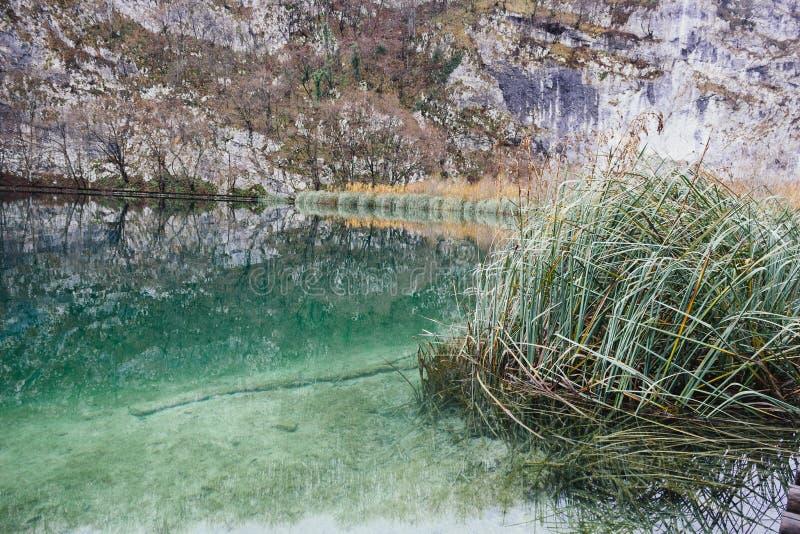 Bezinningen van het Plitvice-Meren Nationale Park royalty-vrije stock afbeeldingen