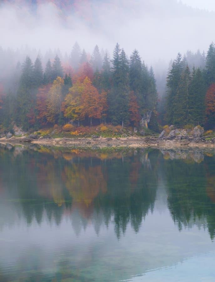 Bezinningen van mistig bos op meer Laghi Fusine in de herfst royalty-vrije stock afbeelding