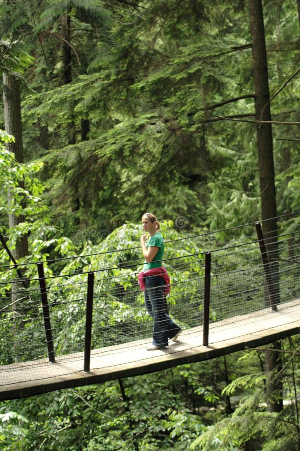 Bezoekers die de Capilano-Hangbrug in Capilano-Parktreetops Avontuur onderzoeken stock fotografie