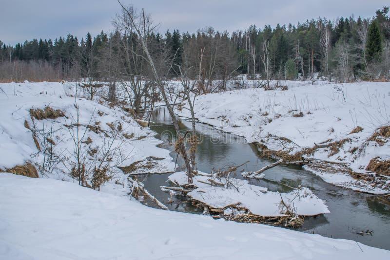 Bezpłatna rzeka w zima lesie obrazy stock