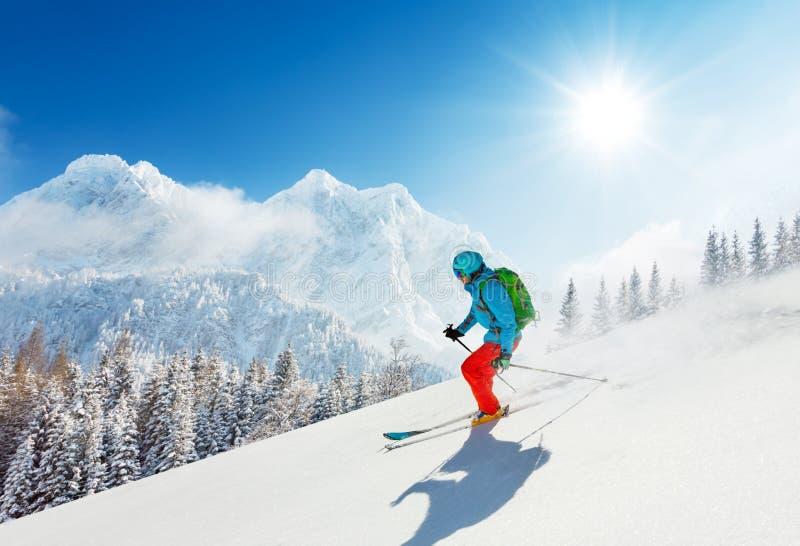 Bezpłatnej przejażdżki narciarka w świeży prochowy śnieżny działający zjazdowym zdjęcia royalty free