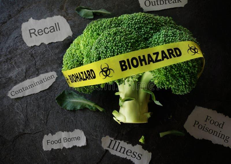 Bezpieczeństwa żywnościowe pojęcie obrazy royalty free