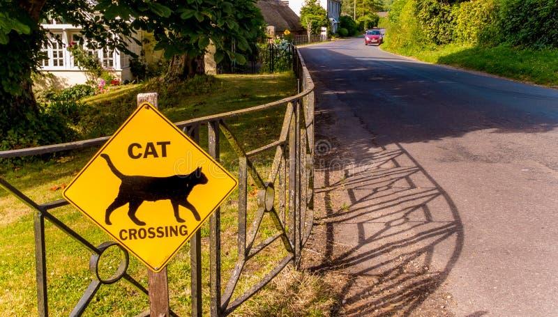 Bezpieczeństwo Na Drogach kota Szyldowy skrzyżowanie zdjęcia stock