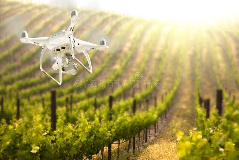 Bezpilotowy samolotu systemu UAV Quadcopter truteń W powietrzu Nad Gronowym winnicy gospodarstwem rolnym fotografia royalty free