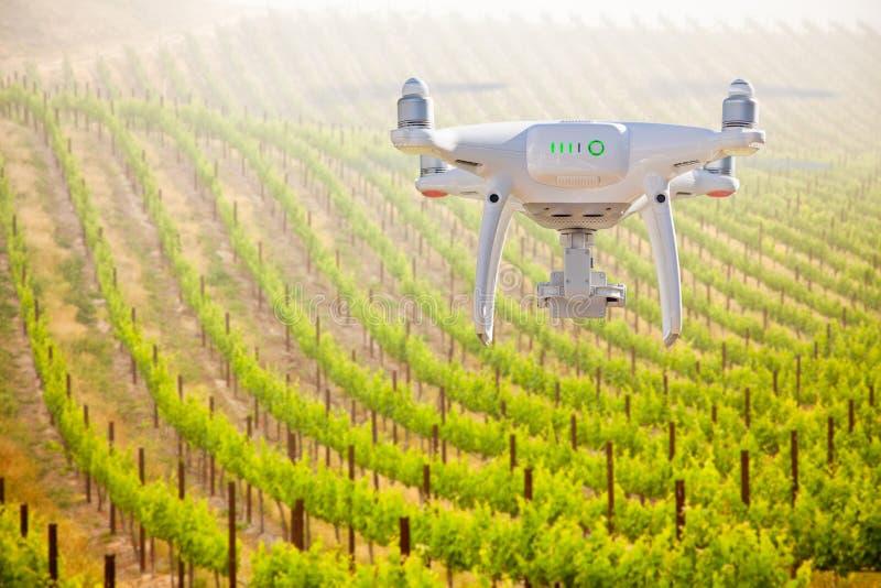Bezpilotowy samolotu systemu UAV Quadcopter truteń W powietrzu Nad Gronowym winnicy gospodarstwem rolnym zdjęcia royalty free