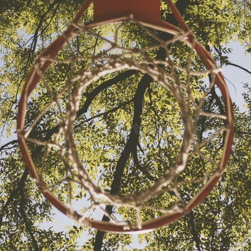 Bezpośrednio pod strzałem koszykówka obręcz na zieleni opuszcza tło obrazy royalty free