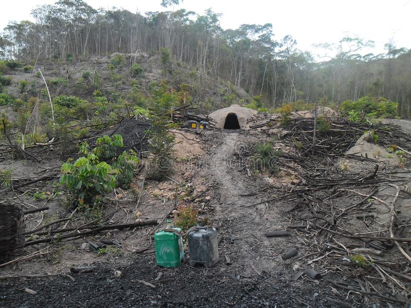 Bezprawna produkcja węgiel drzewny w Mata Atlantica lesie - Brazylia zdjęcia royalty free
