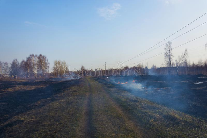 Bezprawny palenie sucha ostatni rok trawa w wczesnej wio?nie fotografia stock
