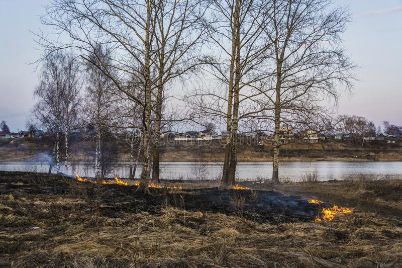 Bezprawny palenie sucha ostatni rok trawa w wczesnej wio?nie fotografia royalty free