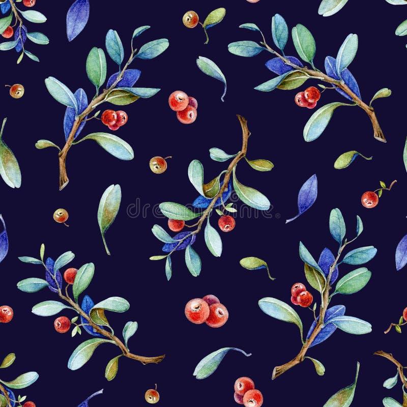Bezszwowa akwareli ręka malował brusznica wzór z realistycznymi czerwonymi jagodami i natura elementami Lingonberry marynarki woj ilustracja wektor