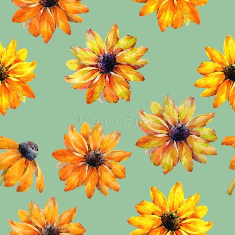 Bezszwowa akwareli tekstura Rudbeckia kwiaty beak dekoracyjnego lataj?cego ilustracyjnego wizerunek sw?j papierowa kawa?ka dym?wk royalty ilustracja