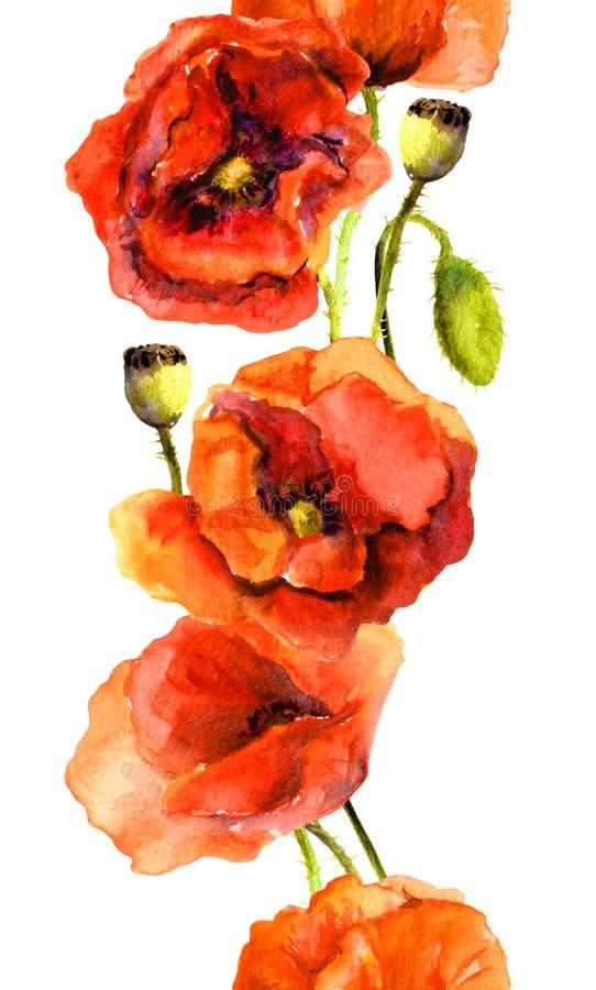 Bezszwowa częstotliwa kwiecista granicy rama z kwitnącymi makowymi kwiatami ilustracja wektor