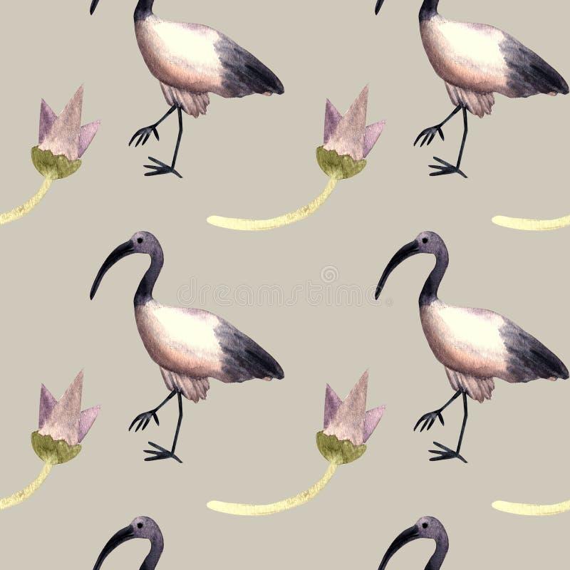 Bezszwowa deseniowa akwarela z ibisem, egipski symbol royalty ilustracja