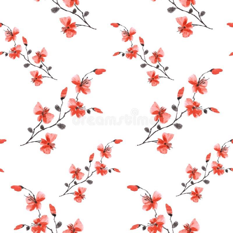 Bezszwowa deseniowa mała dzika czerwona czereśniowa śliwka kwitnie na białym tle Ornament Akwarela - A royalty ilustracja