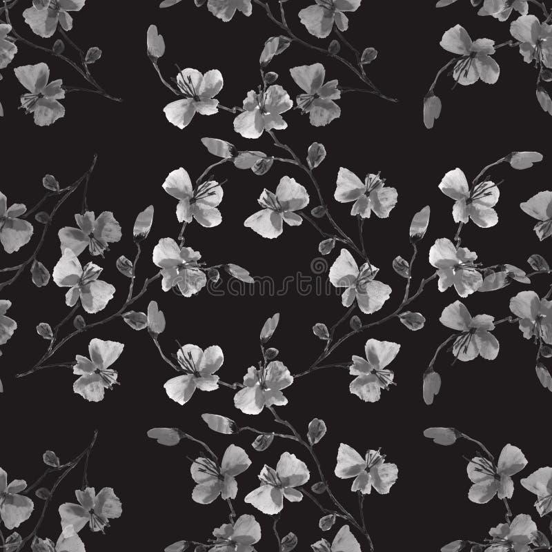 Bezszwowa deseniowa mała dzika szarość kwitnie na czarnym tle szczeg??owy rysunek kwiecisty pochodzenie wektora Akwarela -1 ilustracji