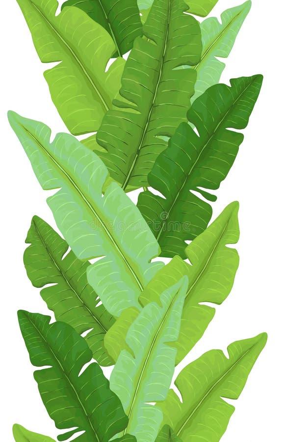 Bezszwowa granica Jaskrawy - zielony banan Opuszcza fotografia stock