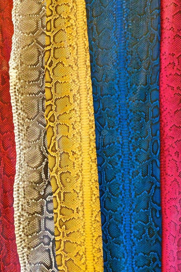 Bezszwowa kolorowa skóra fotografia royalty free