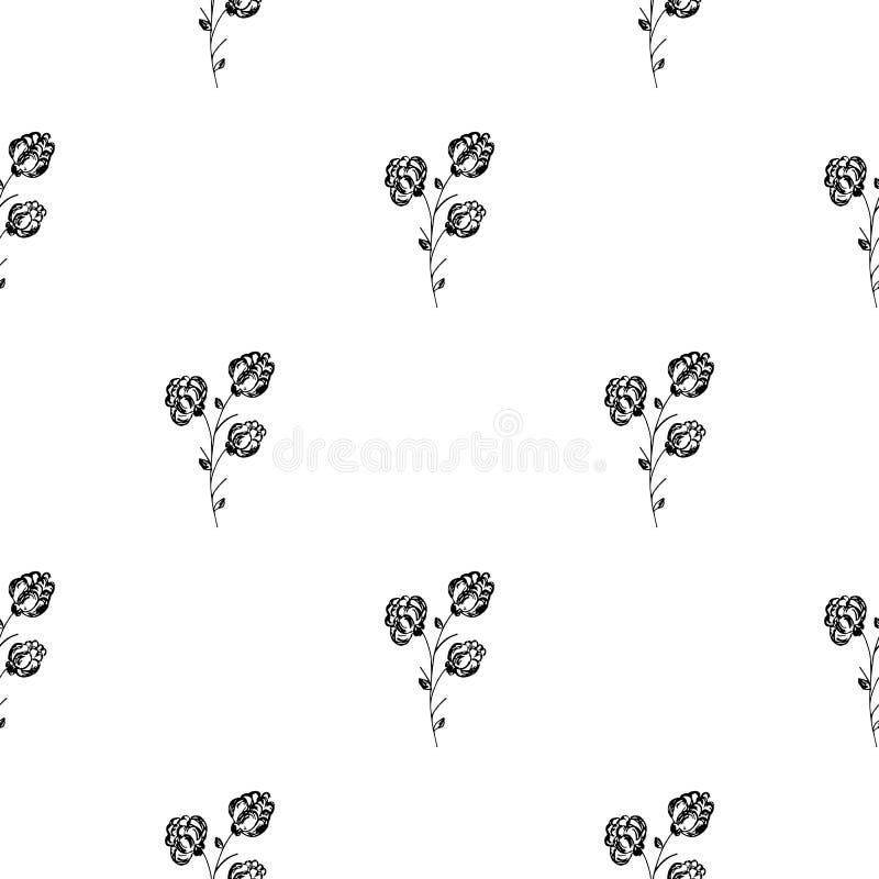 Bezszwowa ręka rysujący wzór odizolowywający abstrakcjonistyczna czernica na białym tle kwiecisty wektor ilustracyjny Śliczny doo ilustracji
