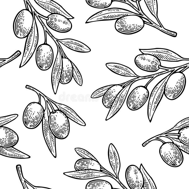 Bezszwowe deseniowe oliwki na gałąź z liśćmi ilustracja wektor