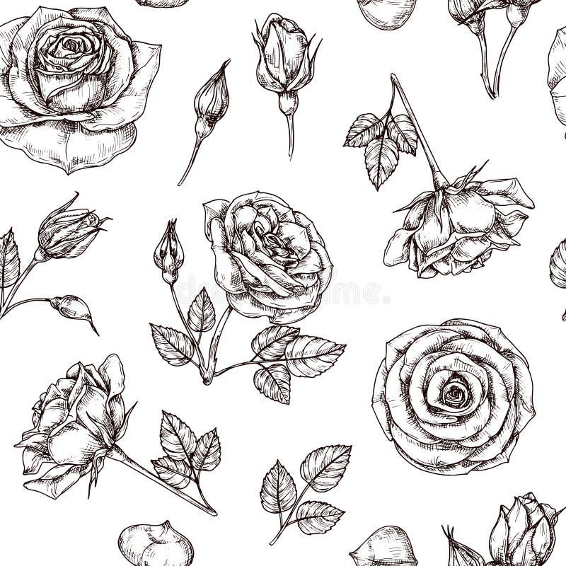 bezszwowe deseniowe róże Ręka rysujący róży kwiecisty textere Kwiat tkaniny powtórki rocznika wektorowy tło royalty ilustracja